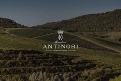 antinori3